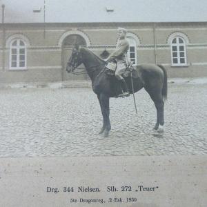 Drg 344 Nielssen